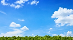 bright blue sky with white fluffy clouds and lush green horizon