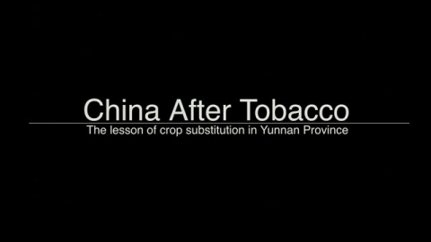 Tobacco Crop Substitution in  China