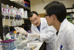 Simin Liu instructing a student in the lab