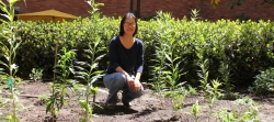Young asian woman crouching in a garden surrounded by newly planted herbs.