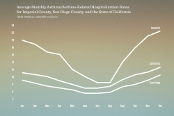 Chart of asthma rates averaged by season