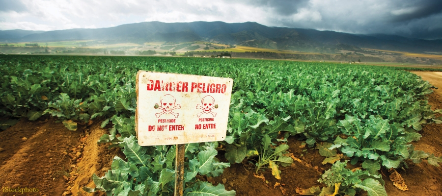 Pesticide Warning Sign in front of agricultural field / iStockPhoto